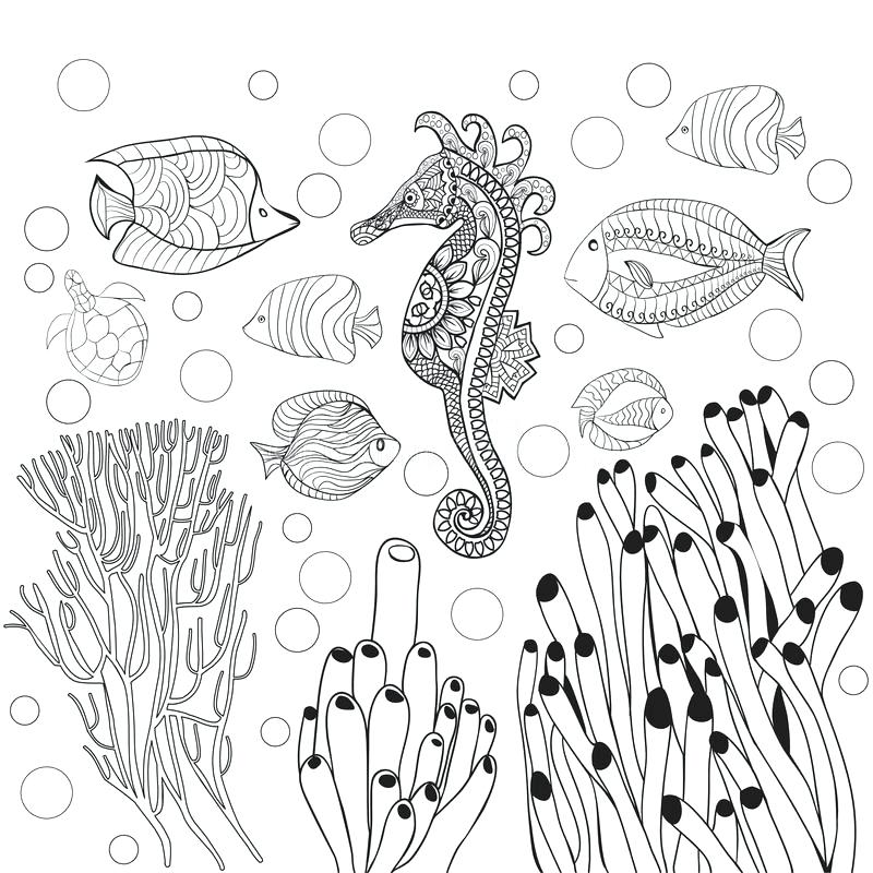 800x800 Underwater Coloring Page Underwater Coloring Pages For Adults