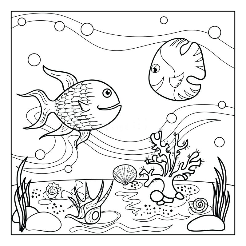 800x800 Underwater Coloring Page Underwater Sea Creatures Coloring Pages