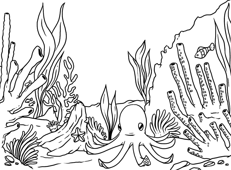 1500x1103 Underwater Scene Coloring Page Adult. Top Ocean Scene Coloring