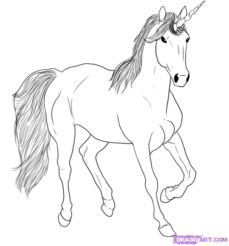 800x859 How To Draw A Sky Unicorn Step 5 Unicorns Unicorns