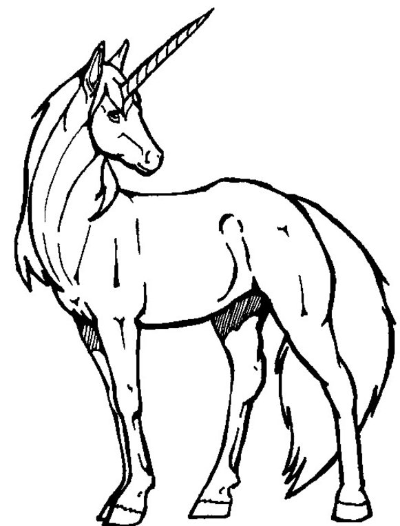 Unicorn Drawing Pages at GetDrawings | Free download