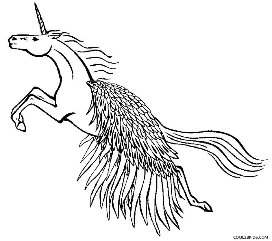 Unicorn With Wings Drawing at GetDrawings Free for