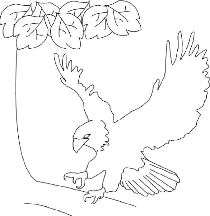 675x693 United States Coloring Pages, National Monuments
