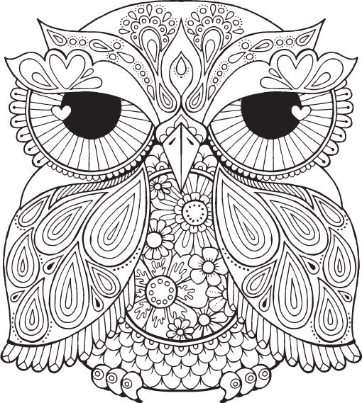 510x569 Lesley Owl Colour With Me Hello Angel By Helloangelcreative