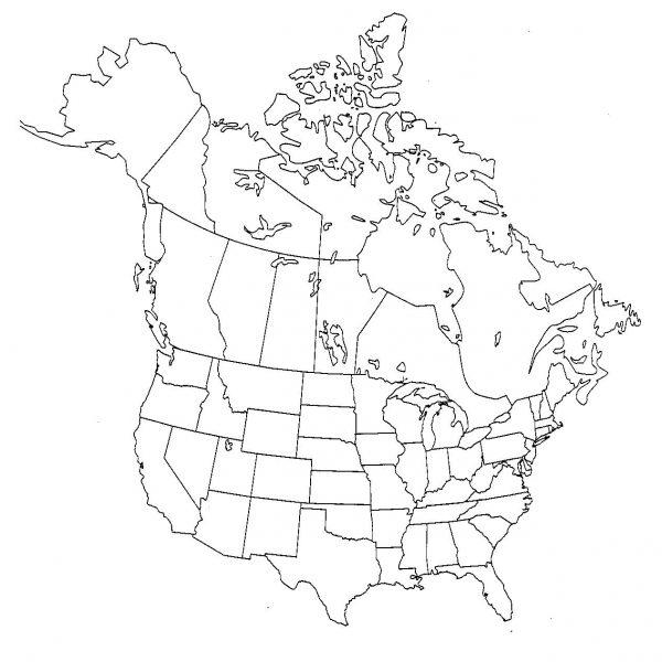 600x600 Us Drawing Map. Usa Map. Usa Maps Images