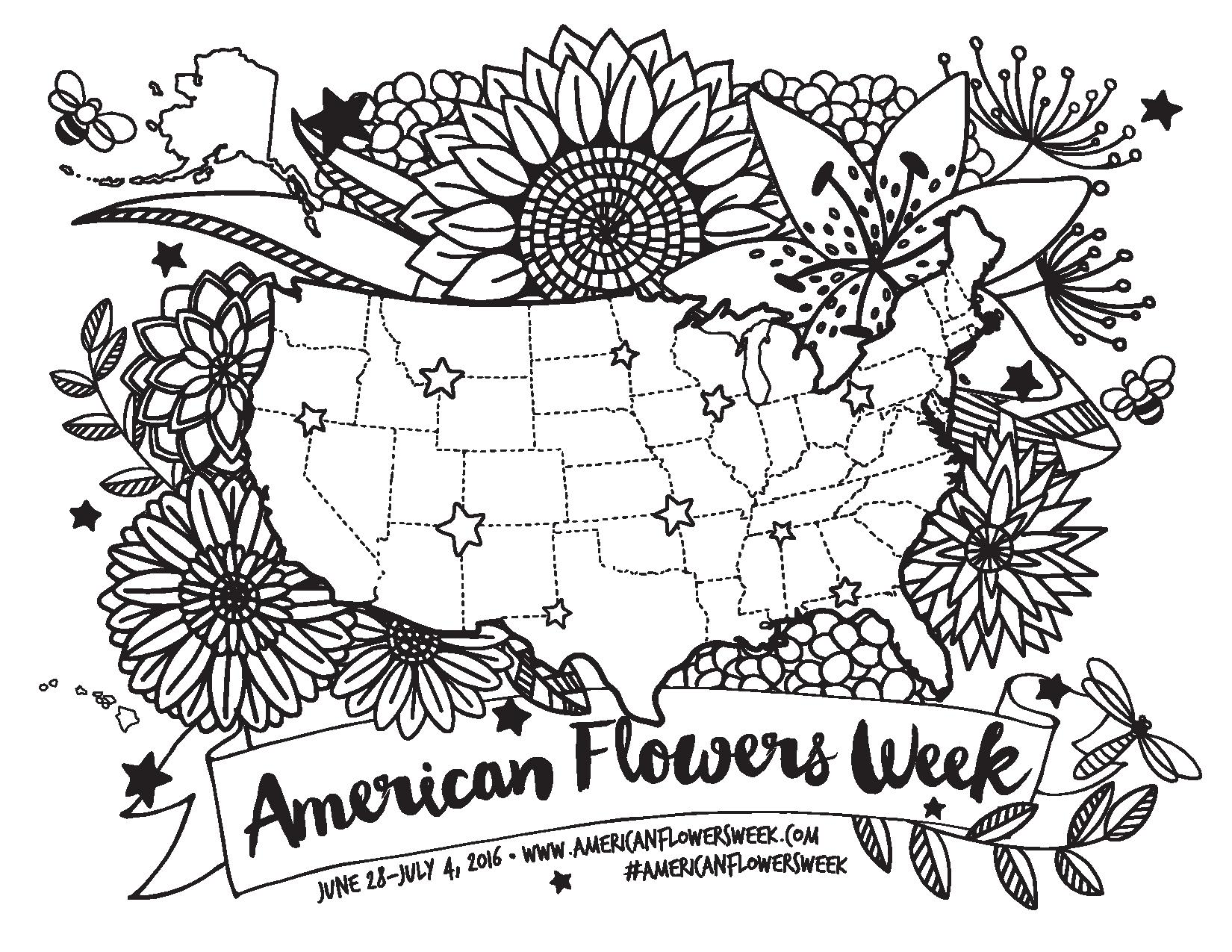 1650x1275 Usa Floral Coloring Map American Flowers Week