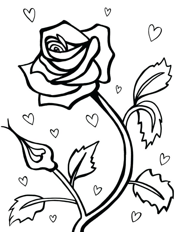 600x776 coloring pages rose roses rose for valentine day coloring page - Coloring Pages Valentines Day