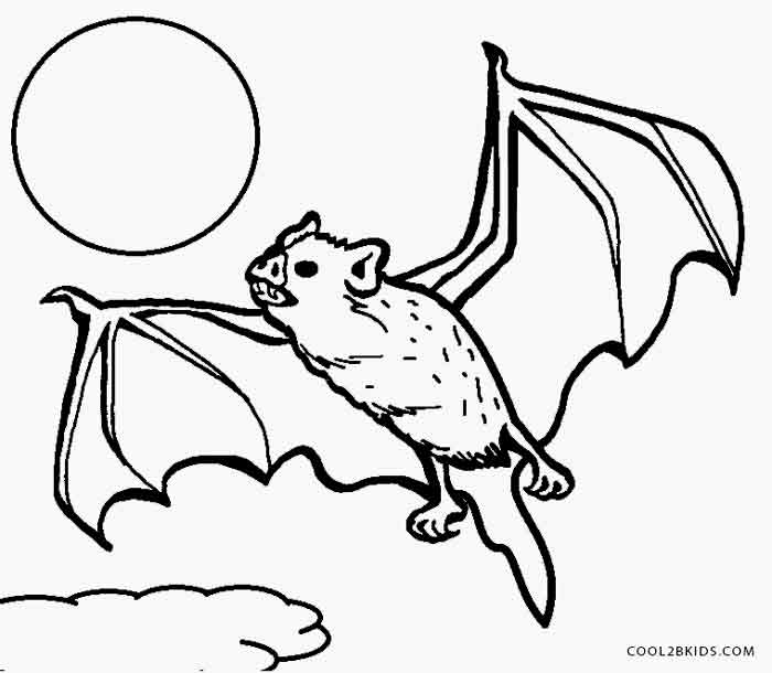 Vampire Bat Drawing at GetDrawingscom Free for personal use