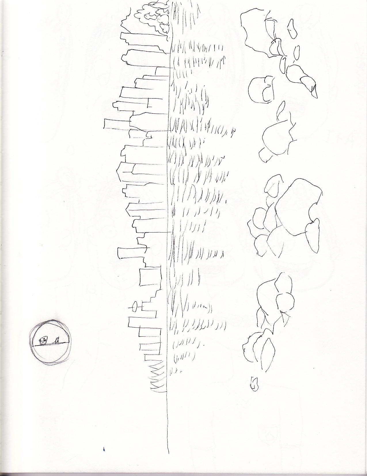 1275x1650 Treeeyeproductions Layouts Sketchbook