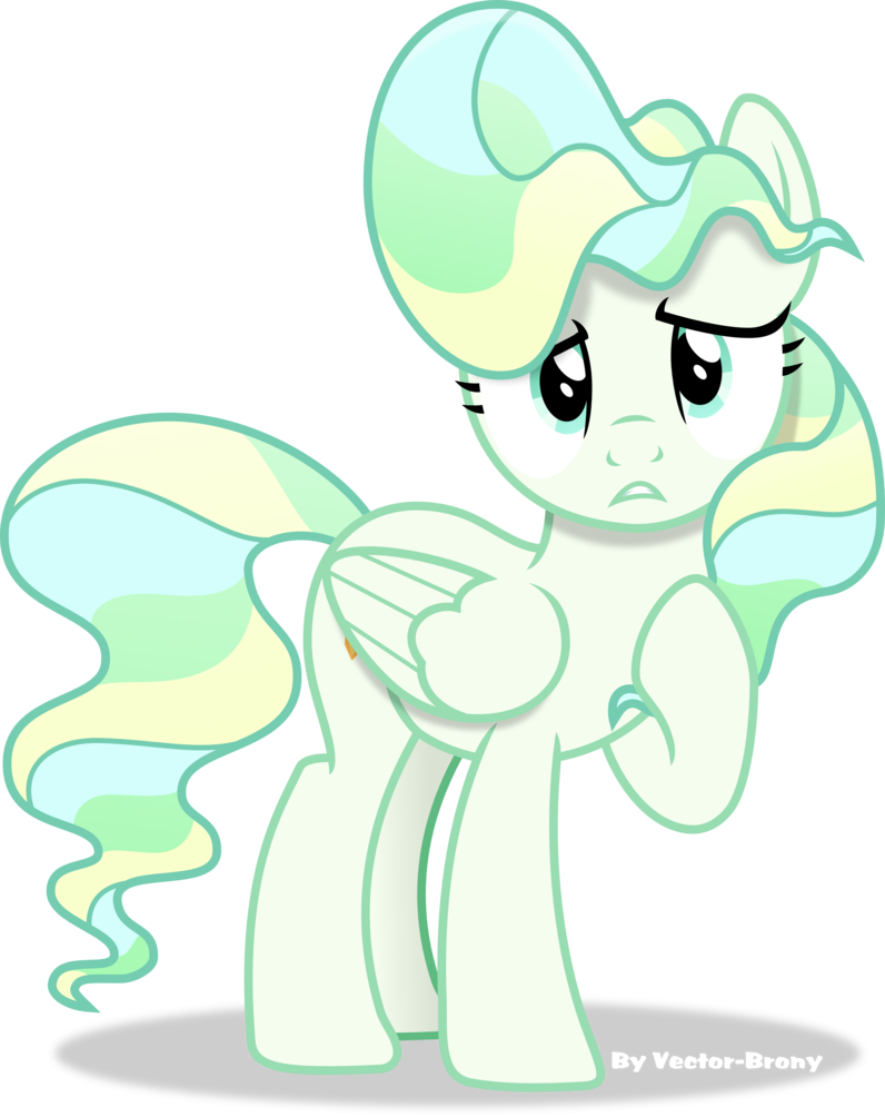 796x1004 Vapour Trail By Vector Brony