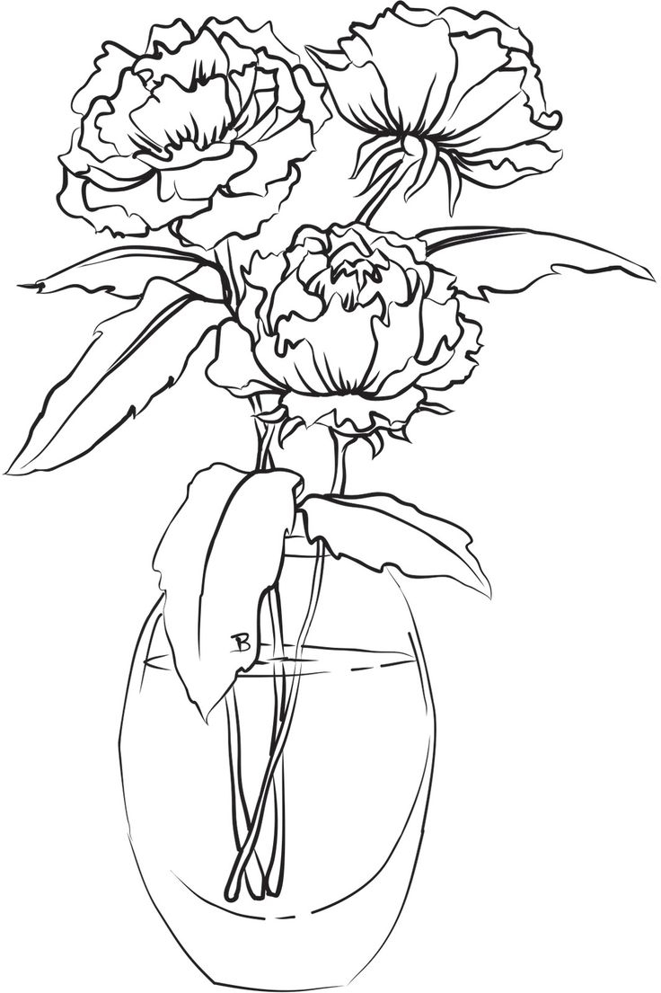 736x1105 Vase And Flower Drawing