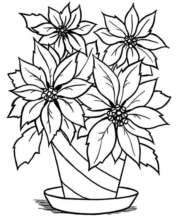 600x734 Drawn Vase Full Flower
