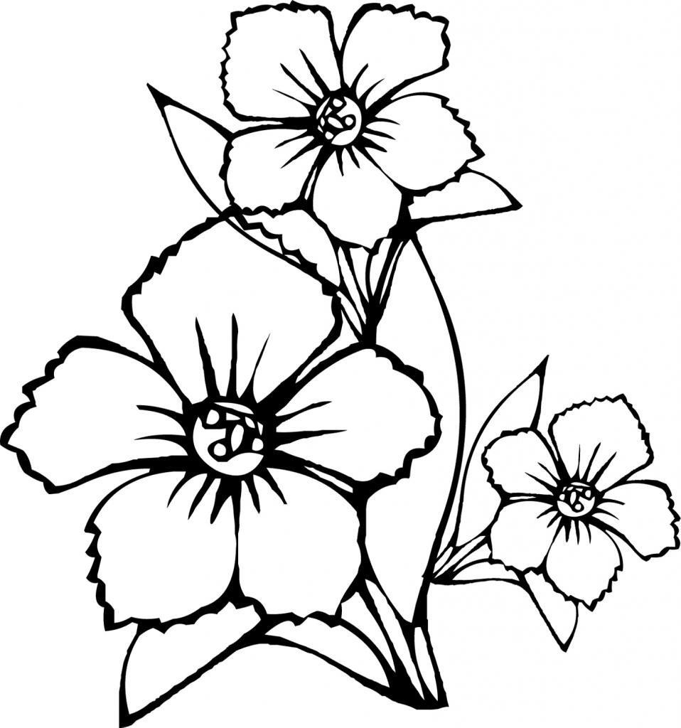 958x1024 Flowers Drawings In Pencil For Kids Pencil Drawing Flower Vase