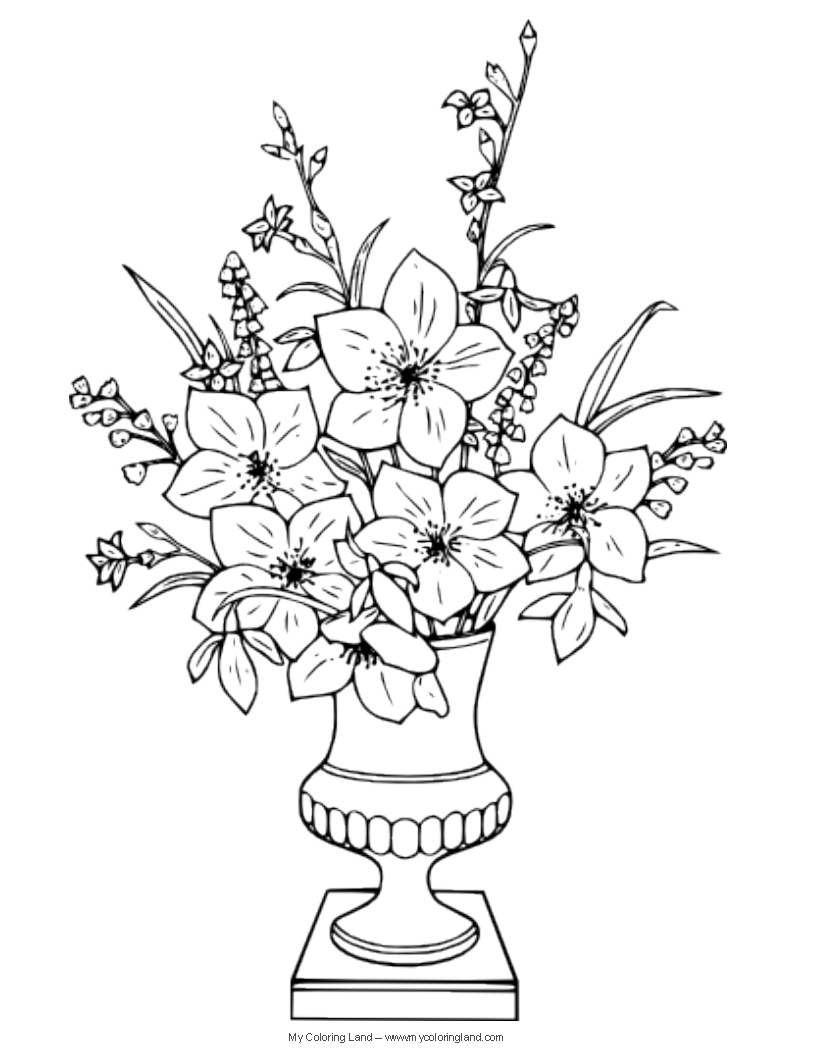 816x1056 Vase With Flowers Drawings