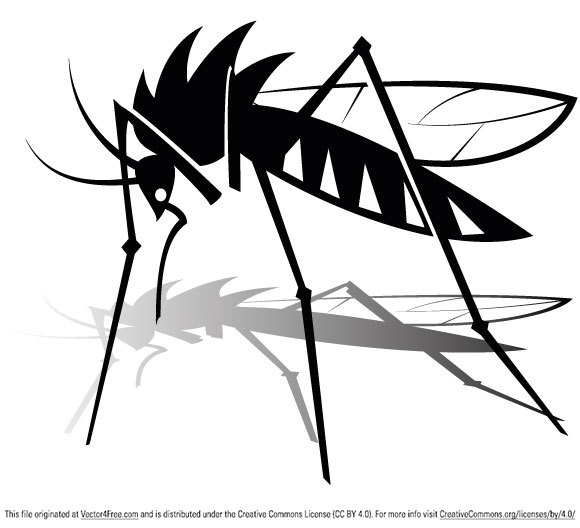 580x528 Free Mosquito Vector Graphics