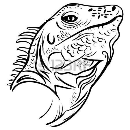 450x450 Iguana Sketch Graphic Design. Royalty Free Cliparts, Vectors,