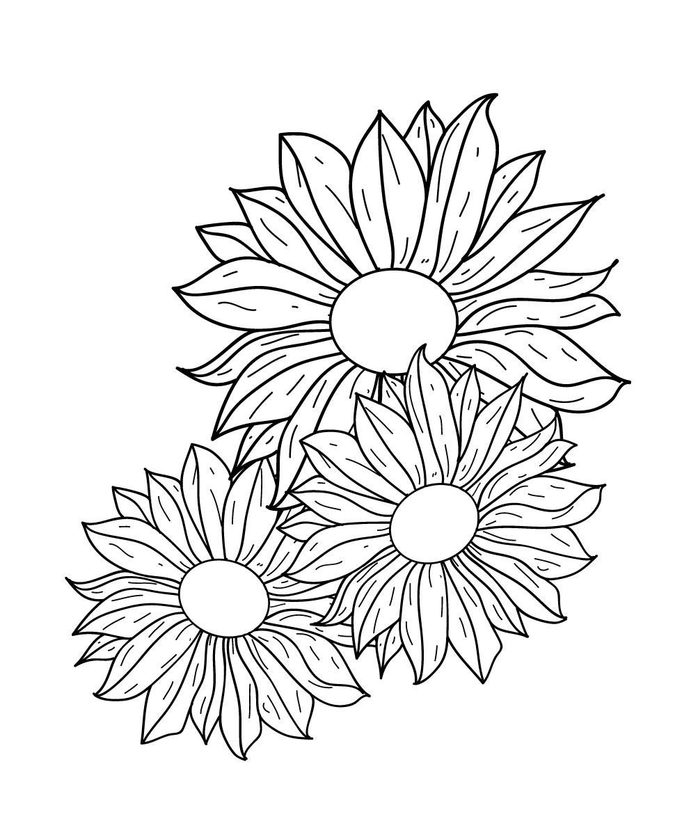 980x1200 Flowers Line Drawing Free Vector 123freevectors