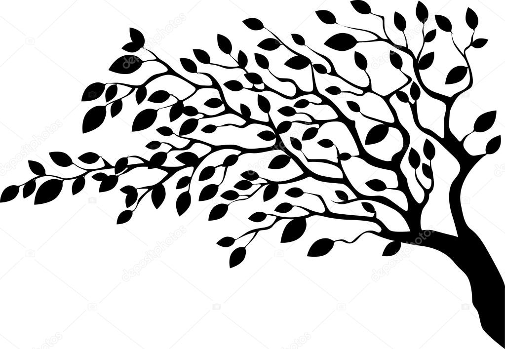 1023x707 Leafy Tree Silhouette On White Background From Side