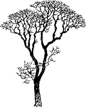296x368 Bare Tree Drawing Free Vector Download (93,319 Free Vector)