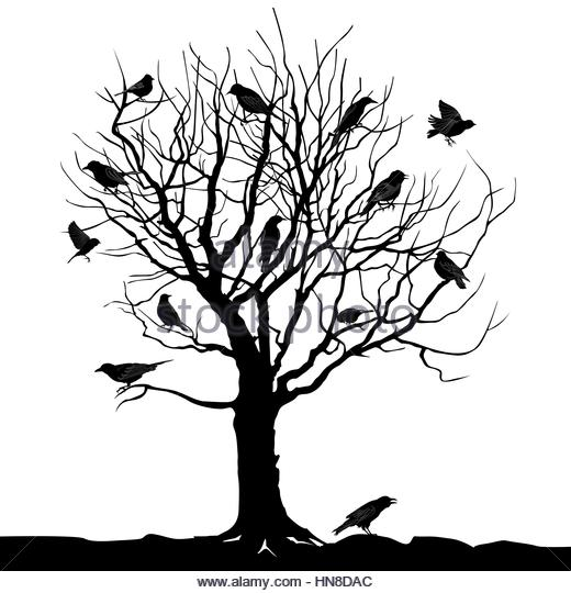 520x540 Dead Tree Stock Vector Images
