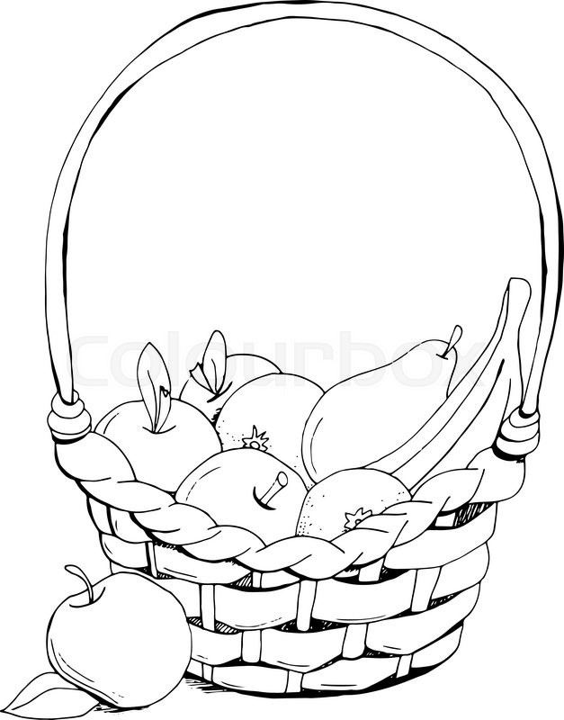 627x800 Fruit Basket Apple, Banana. Hand Drawn, Doodle, Sketch Vector
