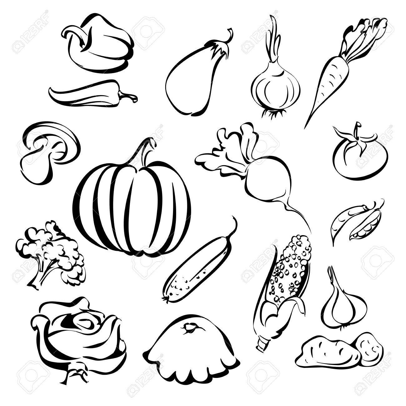 1300x1300 Vegetable Basket Drawing. Basket Of Vegetables Drawing Basket