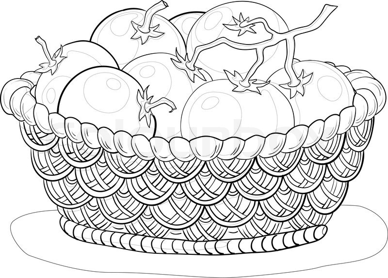 800x574 Vector, Wattled Basket With Tomatoes, Monochrome Contours On White