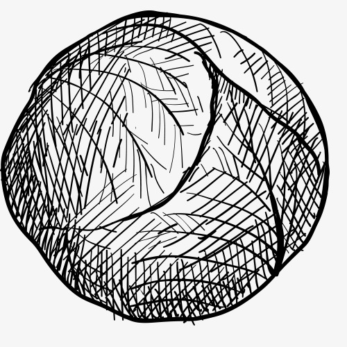 Vegetables Basket Drawing At Getdrawings Com Free For Personal Use