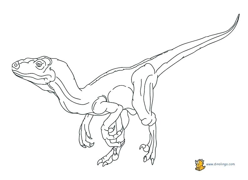 792x576 Velociraptor Coloring Page Good Coloring Page About Remodel Free
