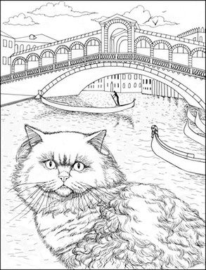 293x385 8 Best Cats In Venice By Stefania Miro Images