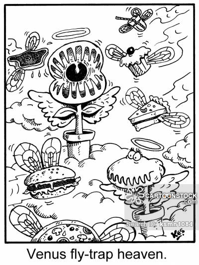 400x534 Venus Fly Traps Cartoons And Comics