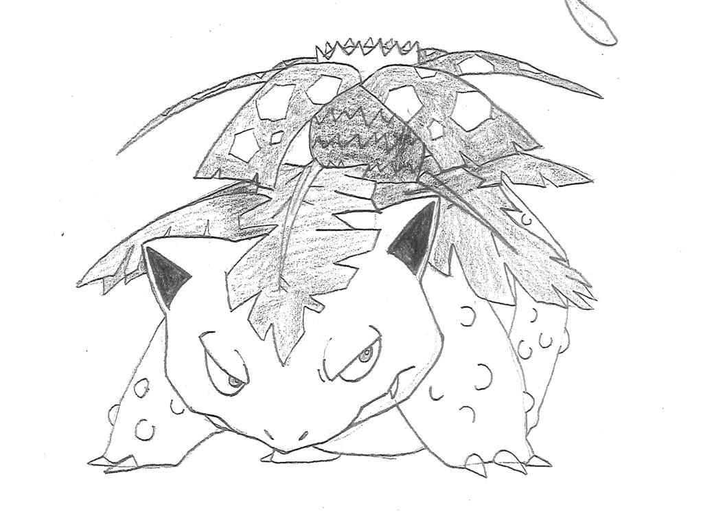 1024x758 Venusaur Sketch By Sketchdaily