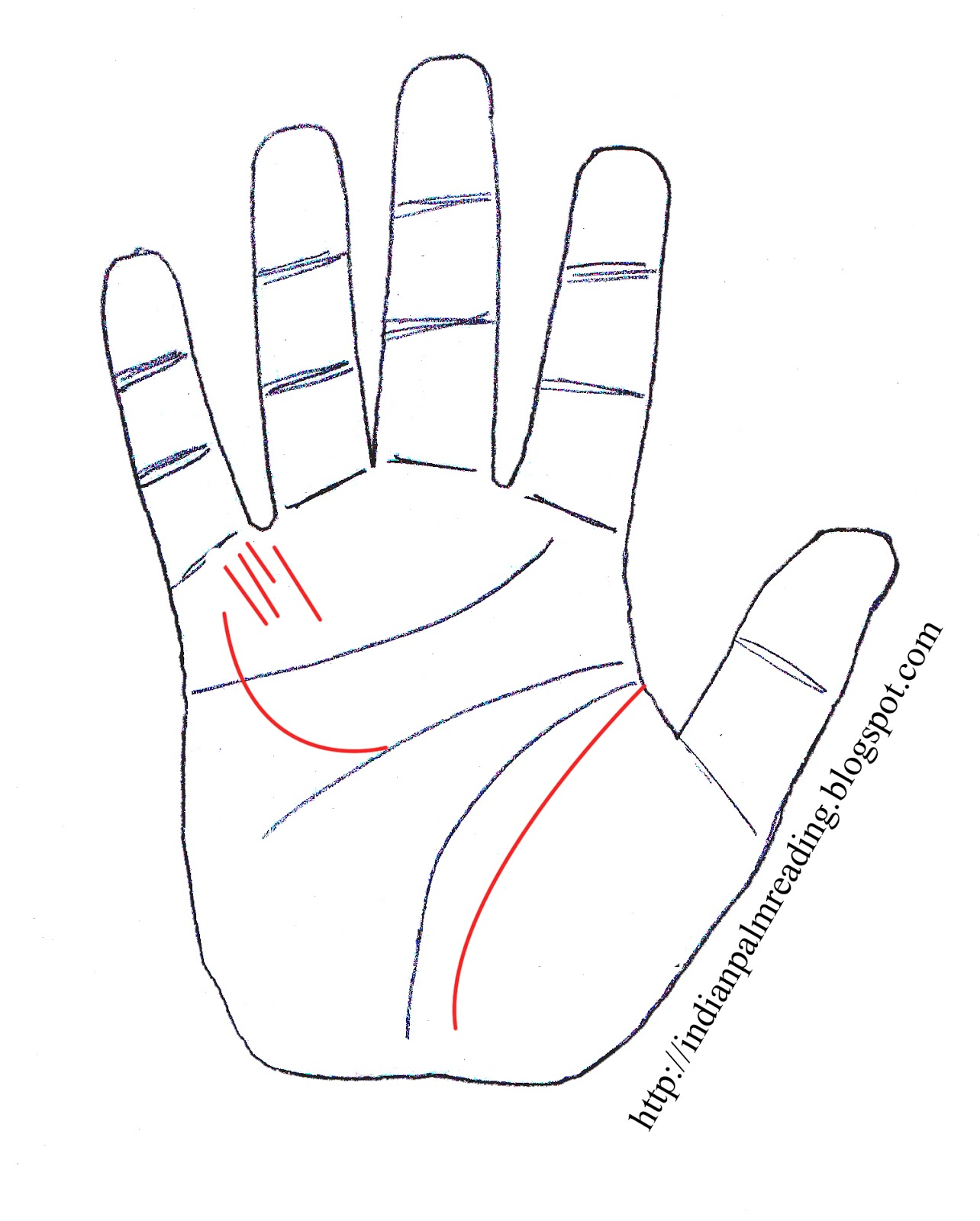 1284x1600 Sign Of Doctor Palm Reading Medical Stigmata (Chikitsak Rekha