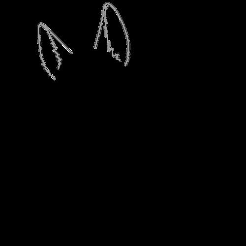 500x500 Dog Animals How To Draw