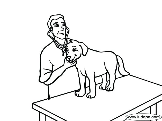 630x470 Veterinarian Coloring Pages Anatomy Coloring Pages Veterinary