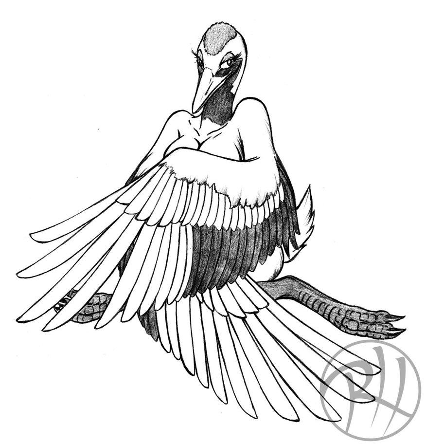 874x914 Yuriko The Crane By Predaguy