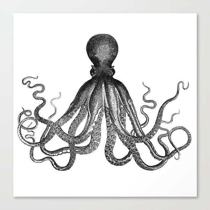 700x700 Antique Nautical Steampunk Octopus Vintage Victorian Kraken Sea