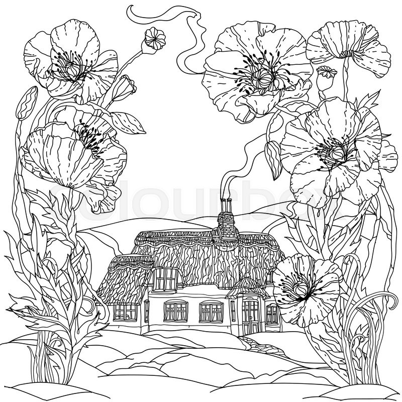 800x800 Field Poppies And Victorian House. Spring Pattern For Adult