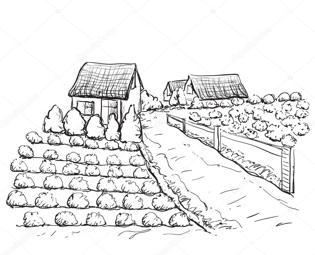 1024x829 Village Houses Sketch And Nature Stock Vector Yuliia25