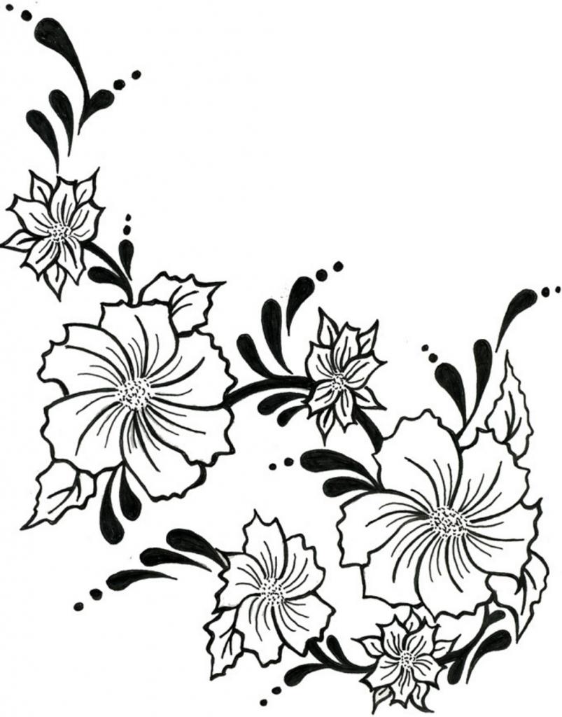 803x1024 Flower Vine Drawings Flower Vine Drawing