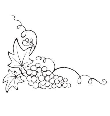 380x400 Design element  +grapevine+vector+831735+ +by+imagination13