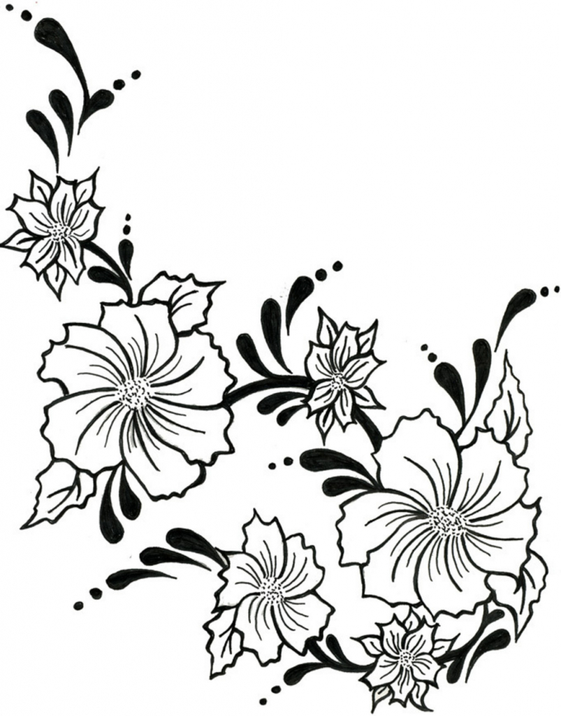 803x1024 Drawing Flowers And Vines Flower Vine Drawing Tulip Flower Tattoo