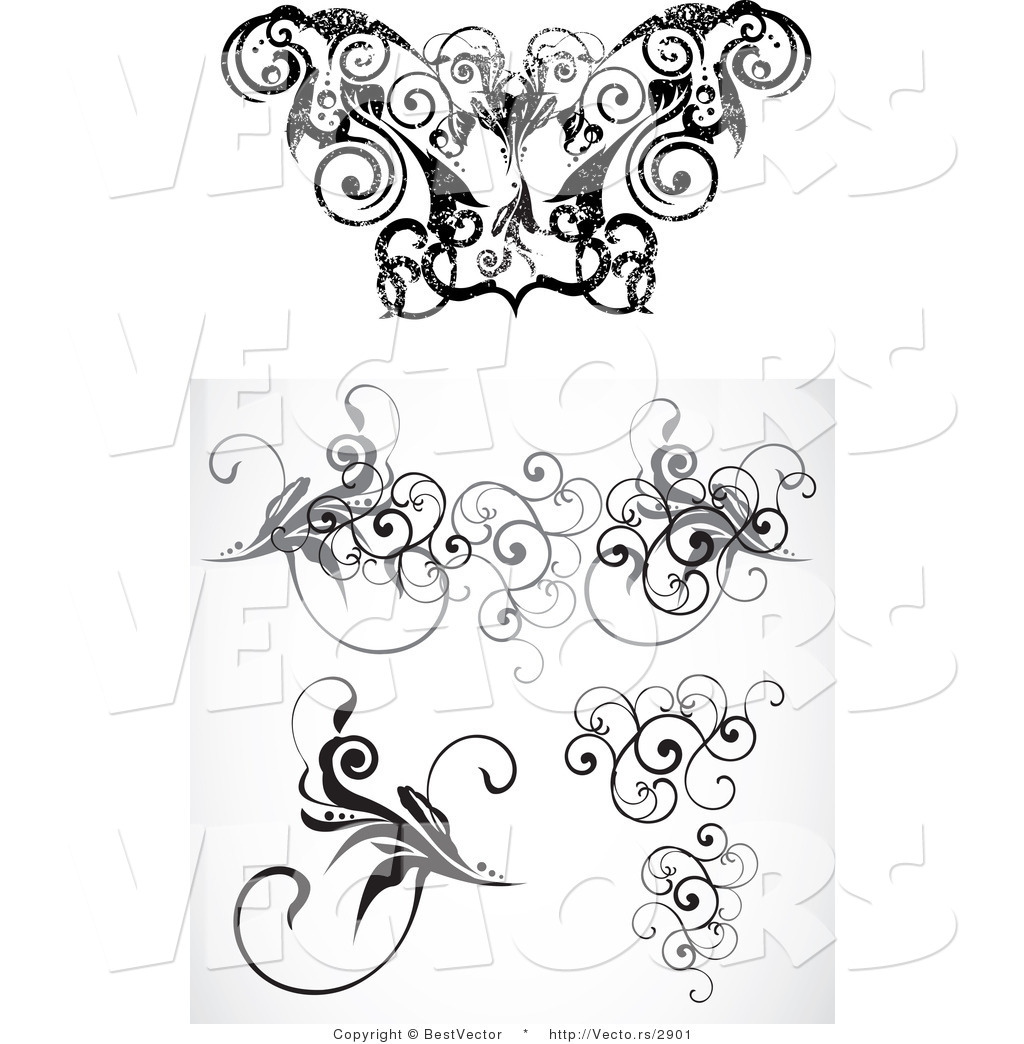 1024x1044 Vector Of Curly Vine Floral Borders
