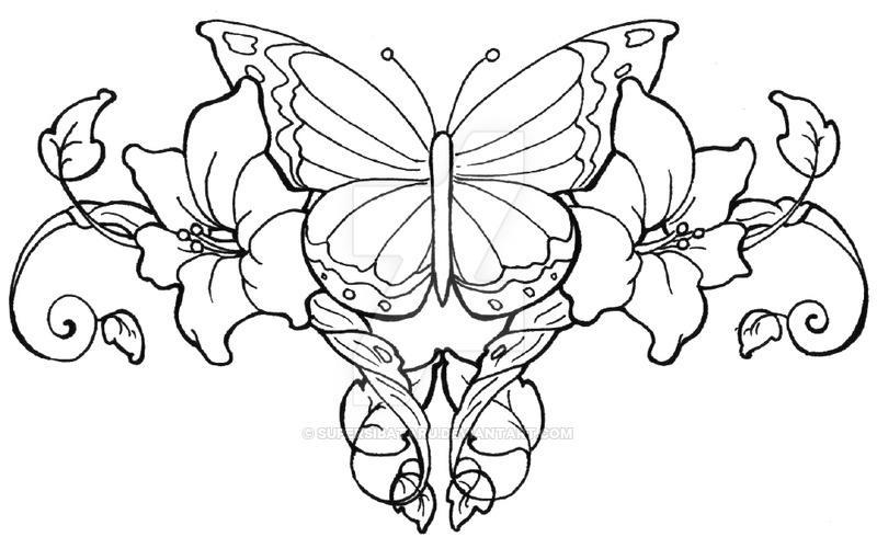 800x490 Butterfly Vines By Supersibataru