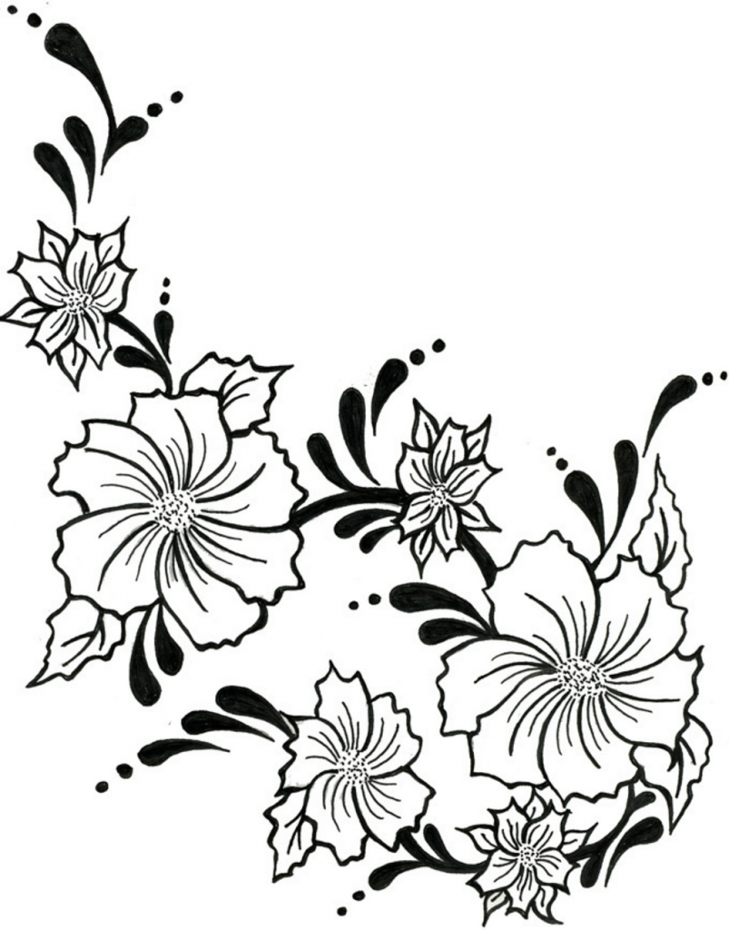 803x1024 Flower Vine Drawing Flowers Vine For Drawing