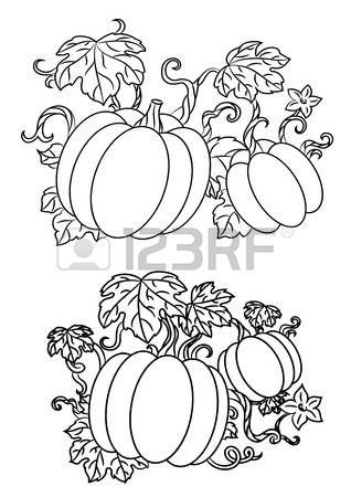 318x450 Black And White Line Drawings Of Pumpkins Growing On Trailing