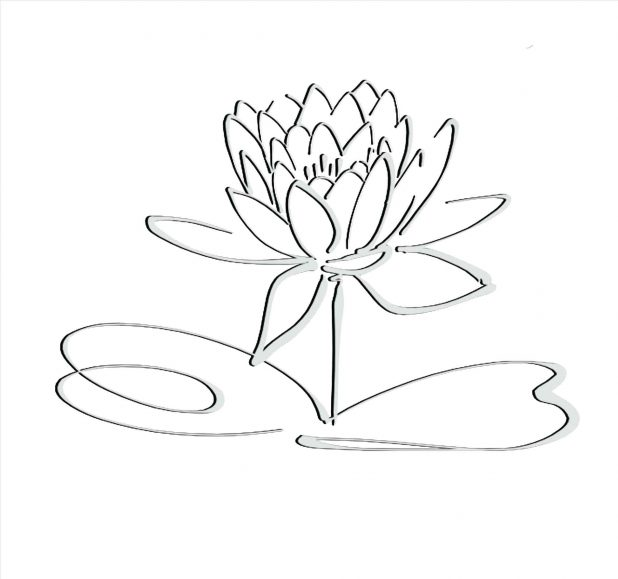 618x579 Design Leaves And Drawings Simple Rose Drawing Outline Of Vines