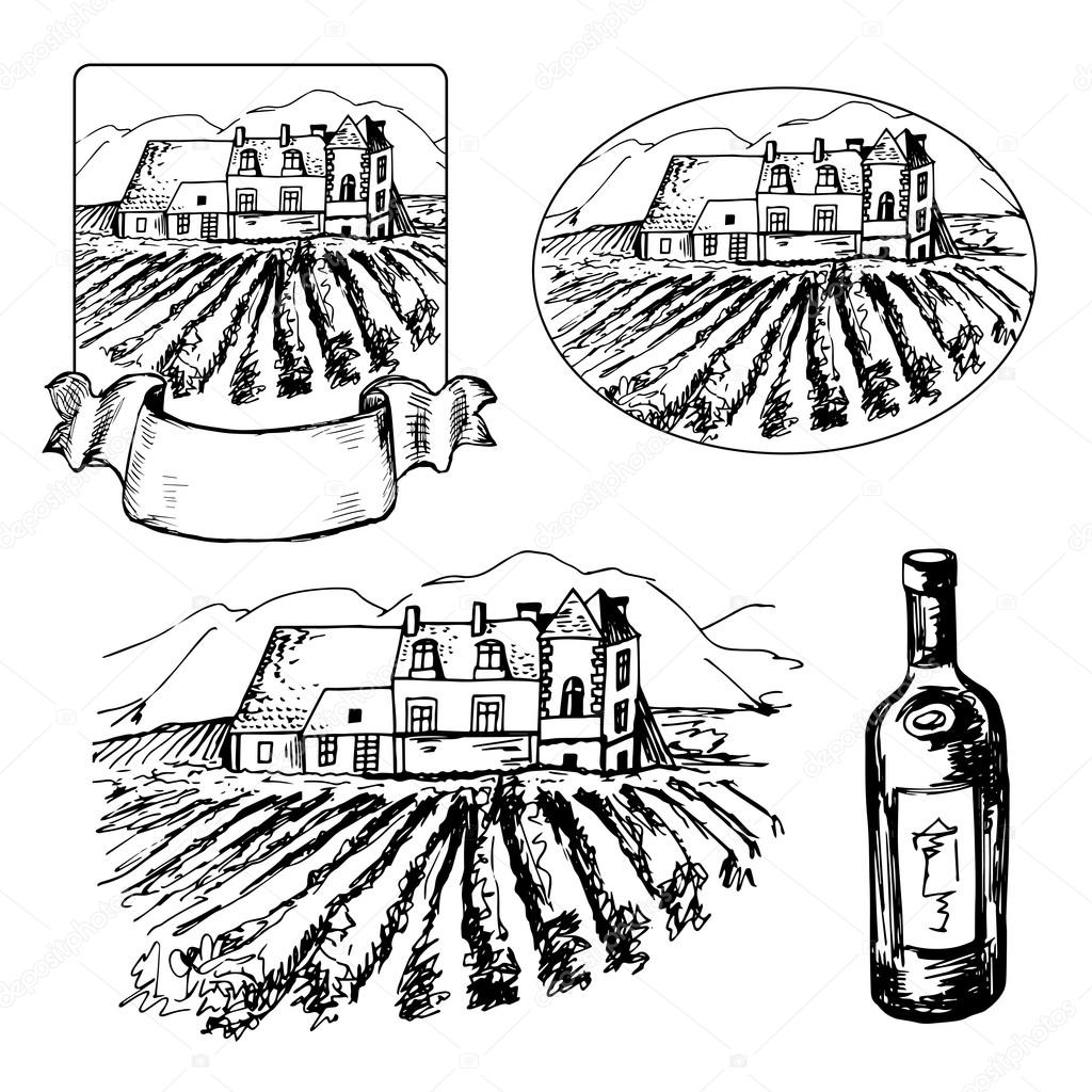 1024x1024 Set Of Different Symbils Of Vineyard And Bottle Of Wine Stock