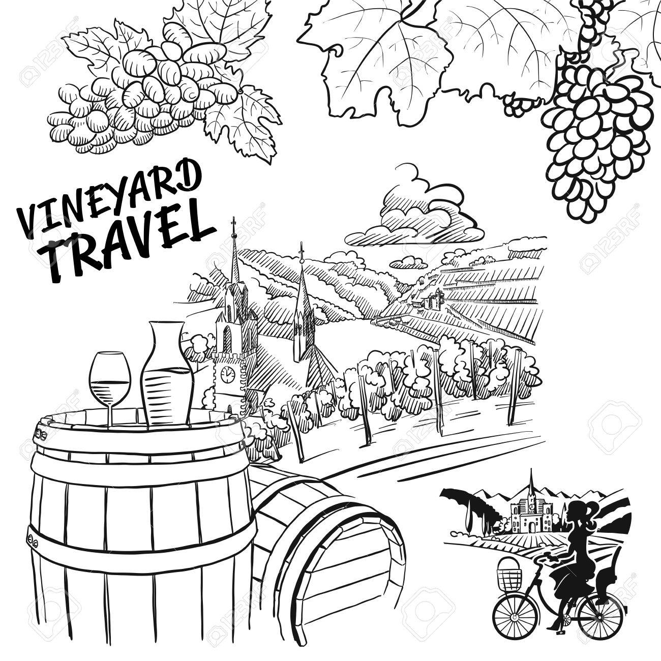 1300x1300 Various Vineyard Travel Concept Sketches, Hand Drawn Vector