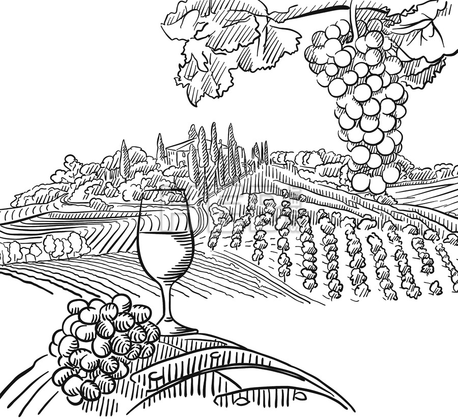 900x823 Vineyard Composition With Grapes And Glass Of Vine Hebstreits